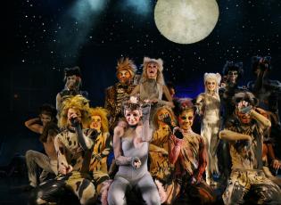 Eines der meistaufgeführten Musik-Bühnenstücke der Welt: Andrew Lloyd-Webbers «Cats»