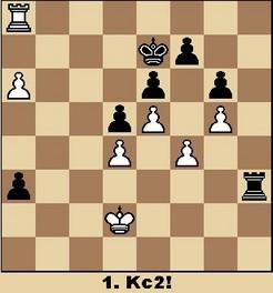 Studie von Van Sheltinga (aus Walter Eigenmann: Hundert Schach-Endspiele für Computer)