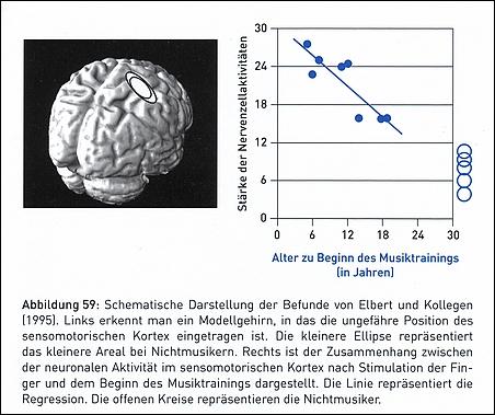 Gehirn_Veränderungen