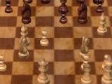Schach_160x120