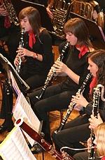 Jugend komponiert Oesterreich