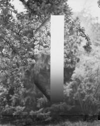 Bercheros - Odyssey - Glarean Magazin